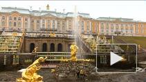 Прививочная кампания в Петербурге продолжается. Гатчина ...