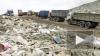 На переработку мусора Петербург потратит почти 60 ...