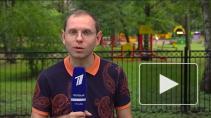 Детский отдых в Ленинградской области: разгар сезона