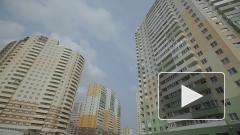 Шушары превращаются в транспортное гетто