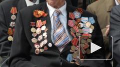 Правительство РФ потратит 62 млрд рублей на выплаты ветеранам к 75-летию Победы
