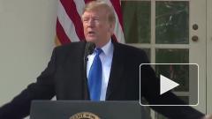 Трамп опубликовал декларацию о доходах за 2019 год