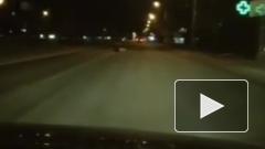 Водитель спас женщину в Ростове-на-Дону