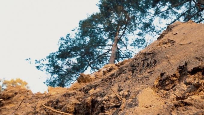 Раскопки крупного ранее неизвестного воинского захоронения ведут поисковые отряды в районе Каменки