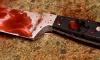 На Московском проспекте автоугонщик облил полицейского краской и ранил его ножом