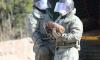 За май саперы ЗВО вывезли с территории города и области более 300 снарядов времен войны