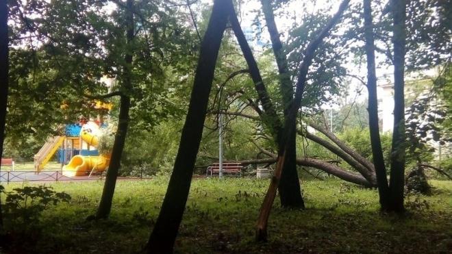 На улице Юрия Гагарина дерево упало на детскую площадку
