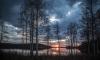 Самый чистый воздух в мире обнаружили в Финляндии