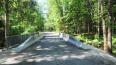 Мост в Ушково стал доступен для машин и пешеходов