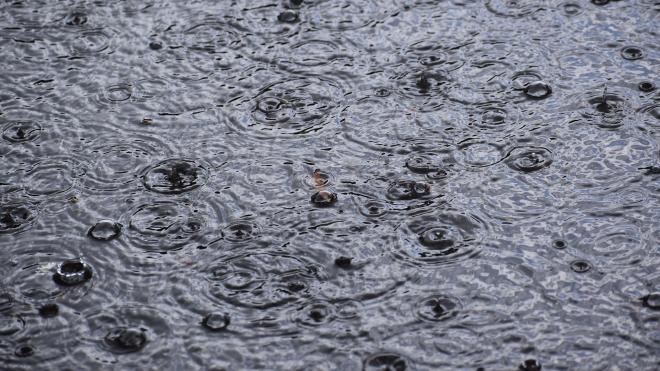 В воскресенье в Петербург нагрянет осень с обильными дождями