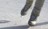 В Петербурге на Большой площади ЦПКиО заработал бесплатный каток