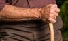 В Красном Селе злоумышленник избил и ограбил 90-летнего пенсионера