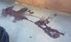В Новом Девяткино полицейский защитил мертвого мужчину от избиения хулиганом