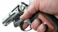 В США отец-психопат расстрелял свою жену и двух приемных ...