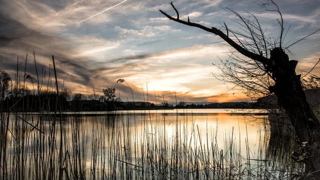 В Ладожском озере нашли труп утопленника