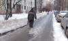 Снег в центре Петербурга уберут к 15 марта