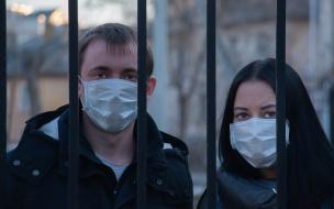 Смольный заявил, что в Петербурге нет всплеска домашнего насилия