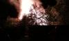 """В садоводстве """"Рубин"""" под Санкт-Петербургом в пожаре погиб 10-летний мальчик"""