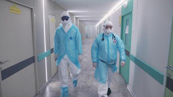 Больница №33 в Колпино начала прием пациентов с коронавирусом