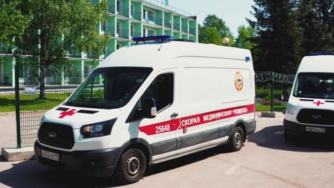 Коронавирус за минувшие сутки унёс жизни 12 петербуржцев