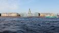 МВД назвало самый безопасный район Петербурга