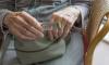 В Подпорожье задержали ограбивших пенсионерку