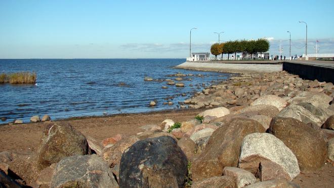 Власти Петербурга начнут восстанавливать пляжи у Финского залива в 2021 году