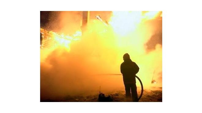 Семеро детей погибли во время пожара в Подмосковье