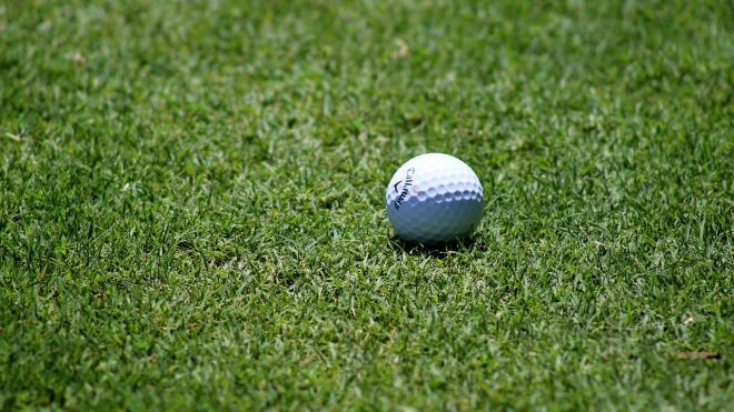 Развитие гольф-туризма обсуждали в Петербурге