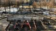 """В Александровском парке люди выстроились в слово """"Театр"""""""