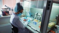 В Петербурге снизился объем тестирования на коронавирус