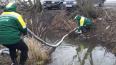 Экослужба выкачала 300 кг воды с нефтью из канавы ...