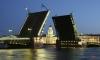 На майские праздники в Петербурге не будут разводить мосты