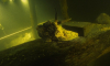 Выставка «Три века под водой»