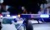 Полицейским Петербурга пришлось забрать из детского сада дочку алкоголиков, забывших про ребенка