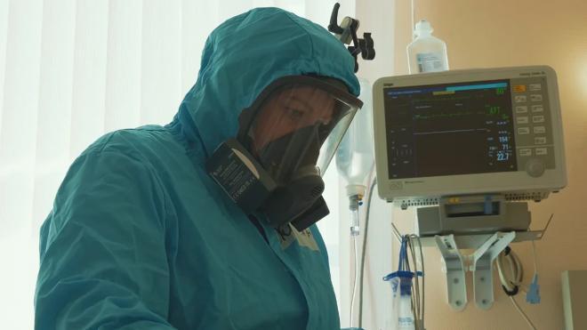 Запоследние сутки в Петербурге коронавирус унес жизни 59 пациентов