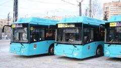 """Парк СПб ГУП """"Пассажиравтотранс"""" пополнили 65 автобусов ЛиАЗ-529267"""