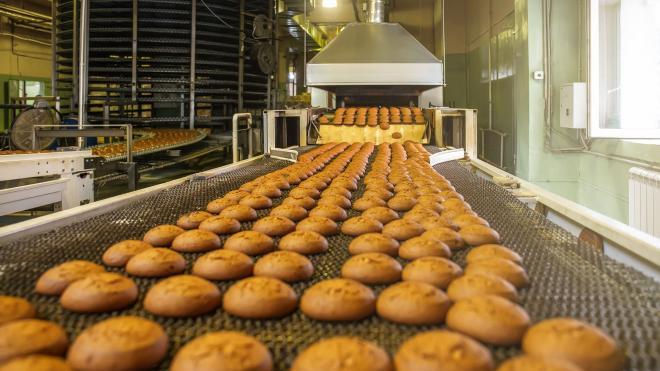Прокуратура добилась зарплаты для сотрудника хлебопекарного предприятия в Сестрорецке