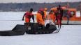 В акватории Финского залива с льдины спасли 105 рыбаков