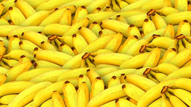 Эквадорские бананы с сюрпризом: полиция нашла 50 кг наркотиков в ввозимом в Петербург грузе
