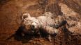 Шестеро пакистанских детей умерли от бомбы-игрушки