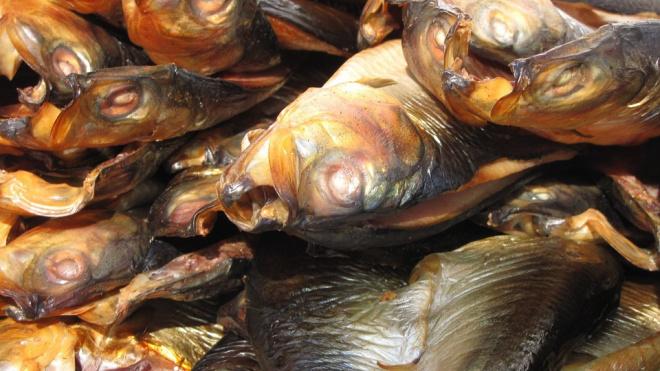 Петербургскую компанию оштрафовали на полмиллиона рублей за неправильную утилизацию рыбы