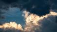 В Петербурге ожидается сильный ветер в пятницу