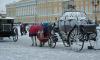 Прием гостей Петербургского экономического форума на Дворцовой обойдется городу в 15 млн рублей