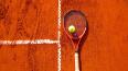 Звонарева обыграла Макарову: обе теннисистки получили ...