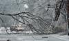 В Ленобласти шторм оставил без света 20 населенных пунктов