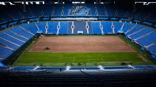 Фитосанитары проверили новый газон стадиона на Крестовском