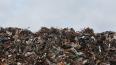 В Подмосковье ищут площадку для нового полигона мусорных ...