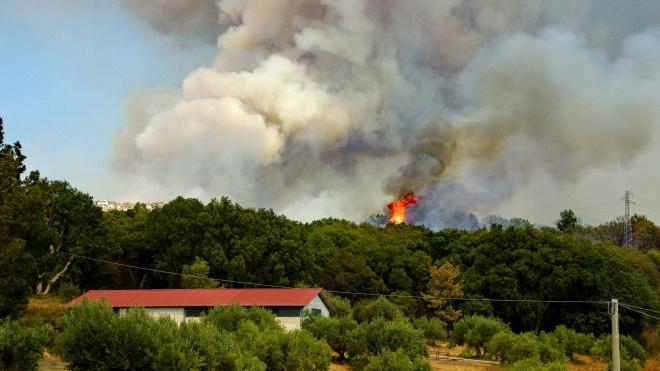 Жителей области предупреждают о повышенной пожароопасности