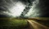 Петербуржцев предупредили о сильном ветре в четверг